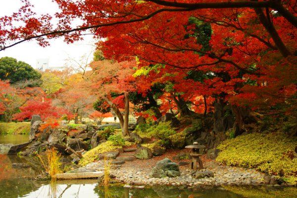 小石川後楽園②