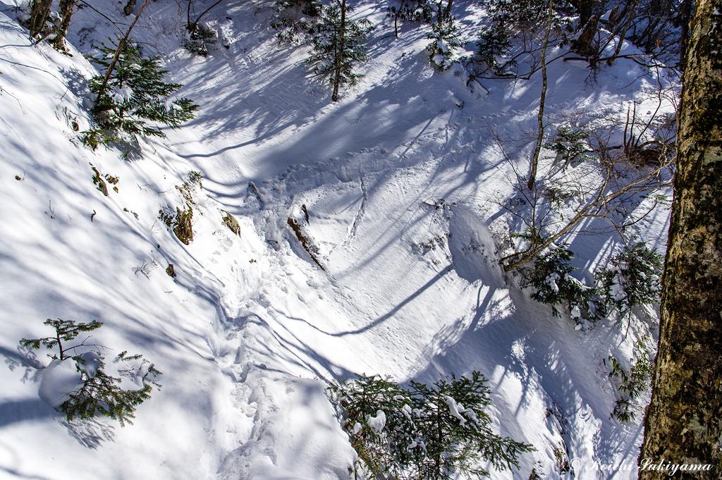 登山道が山腹を走っているため、斜面のトラバースが多く注意が必要です。