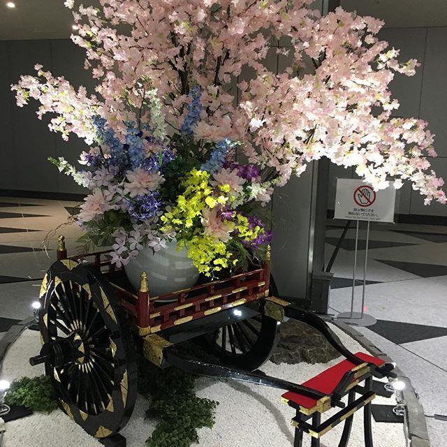 Sakura#sakura #cherryblossom #tokyo #japan #roppongi - from Instagram