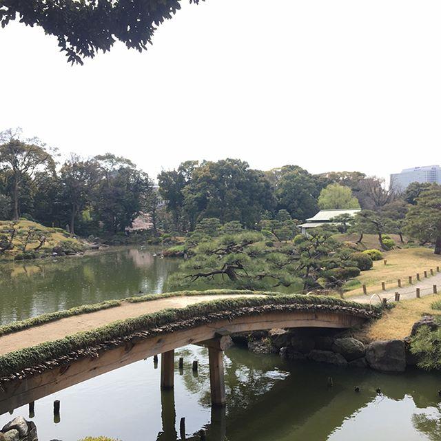 清澄庭園 Kiyosumiteien #japan #tokyo #sakura #spring #garden - from Instagram