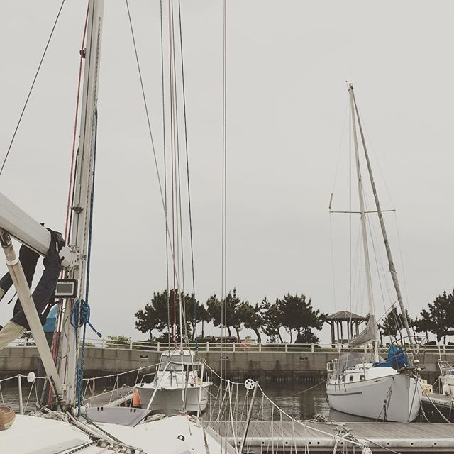 江ノ島 GW 最終日は曇り。Enoshima. It was cloudy last day of at Golden week #japan #sailing #yacht #yachting - from Instagram