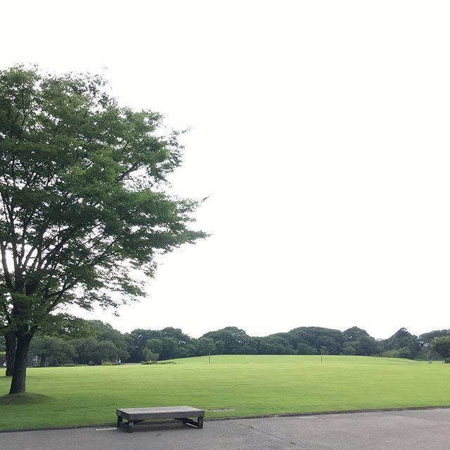 金沢兼六園 Kanazawa Kenrokuen #japan #park - from Instagram