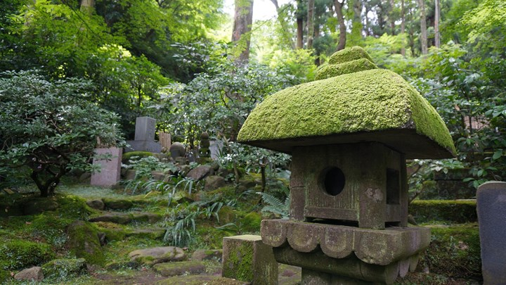 Tokeiji Temple 東慶寺