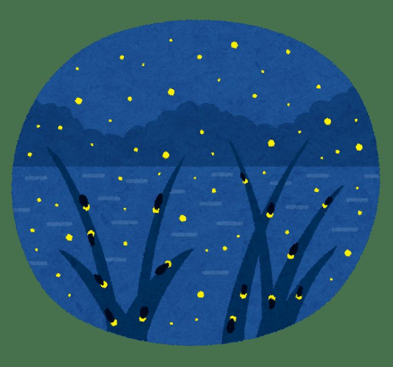 ホタル 蛍 ほたる Firefly