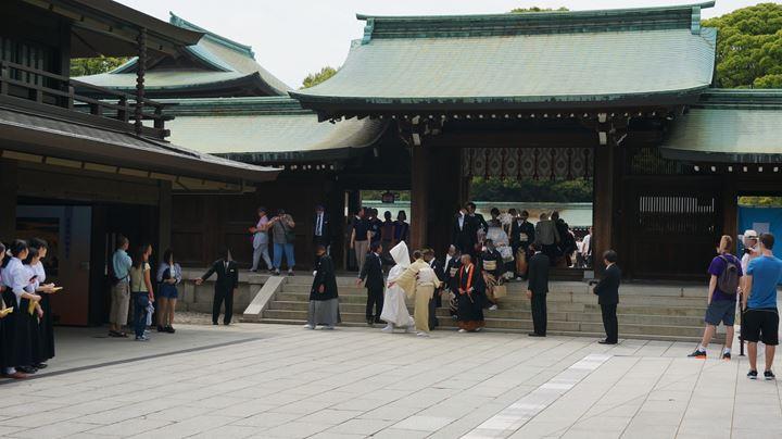 Meiji Jingu Shrine 明治神宮