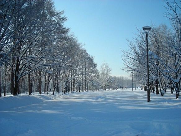 Asahikawa Hokkaido Japan Deluxe Tours