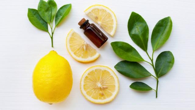 plant therapy, アロマ, アロマセラピー, 植物, エッセンシャルオイル