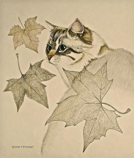 The Leaf Cat