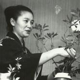 Toshiko Yoshikawa