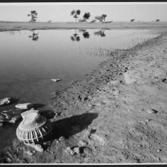 Nishimura-Near-Jaiselmer,-Rajasthan-copy