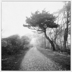 Nishimura-Tintagel,-Cornwall,-Dec.-24,-1982-copy