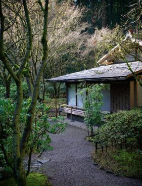 Tea Garden Portland Japanese Garden