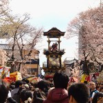 Inuyama Sakura float