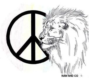 nam_co (5)