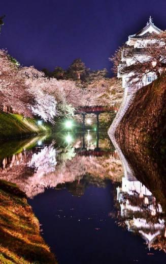 シェア&コメント大歓迎です。Kenichi Shiratoriさんの作品。【Kenichi Shiratoriさん】
