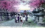 ueno - toshogu temple