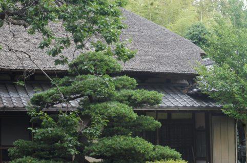 古民家母屋