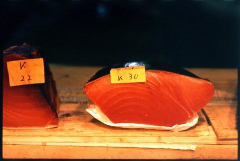 tuna_tsukiji
