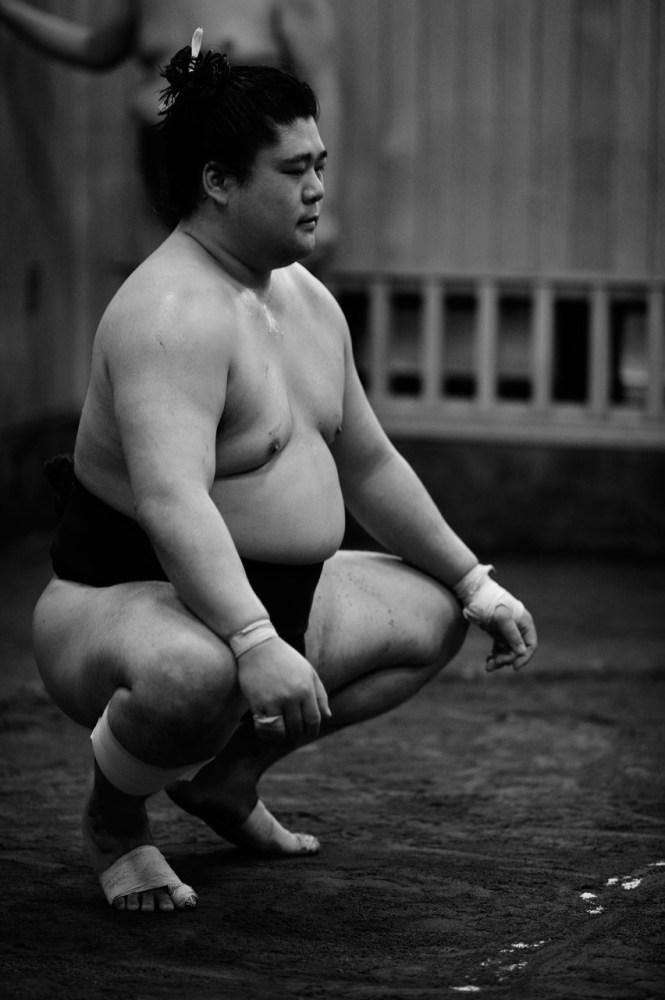 ALF_8490_sumo-small
