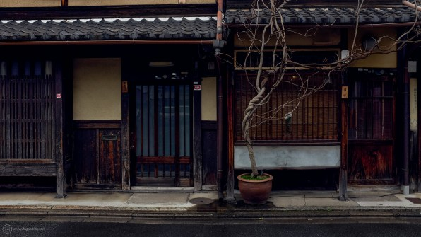 kyoto-8thMarch2018_DSF4758