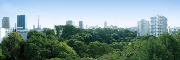 Park Mansion Mita Tsunamachi The Forest 3