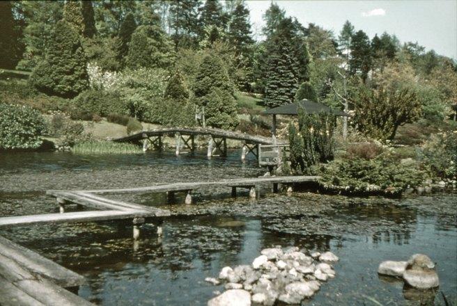 japanese-garden-1950s-2