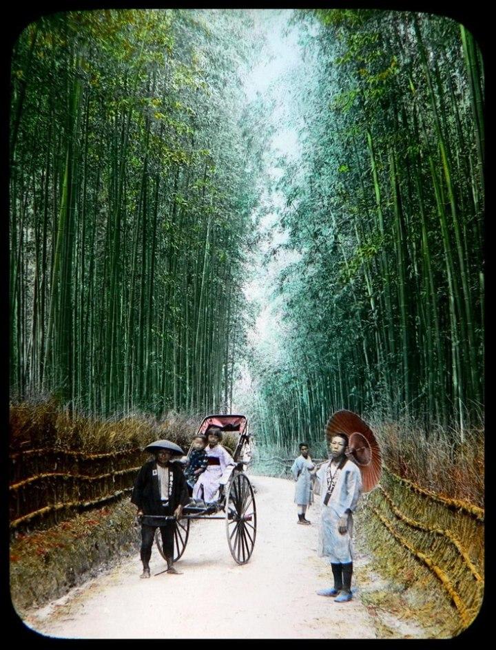 Tokugawa Roads, awwwwww yeah!