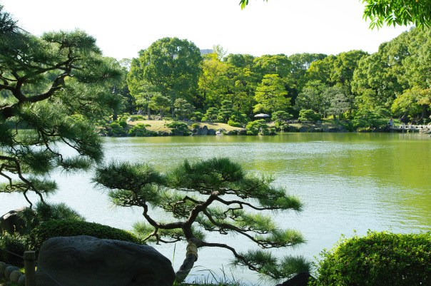 Former daimyo palace turned Zaibatsu playground turned municipal park: Kiyosumi Tei'en. You gotta love Japanese gardens!