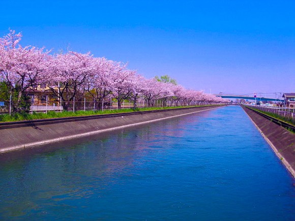 The Musashi Waterway in Gyoda, Saitama leads the Tone River towards its confluence with the Arakawa (itself part of the Tone Watershed).