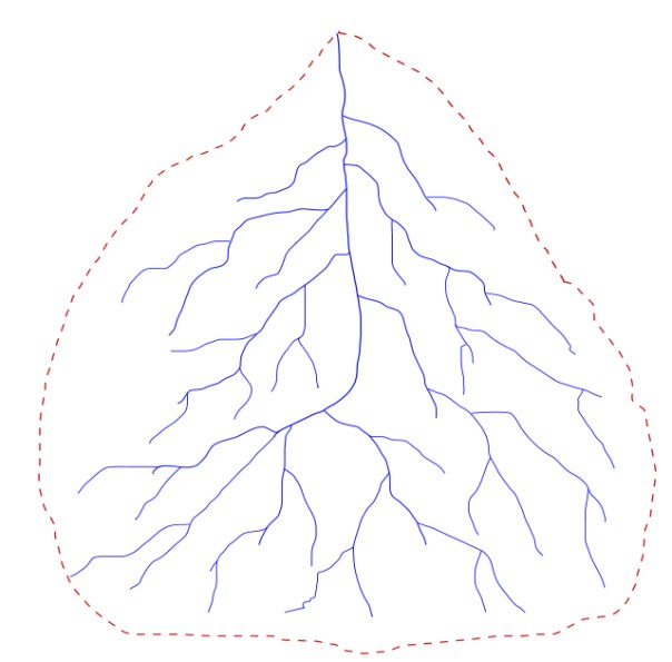 Example of a watershed. Hopefully the leaf analogy makes sense now.