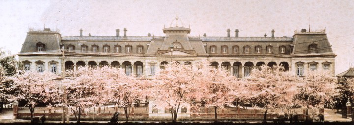 Cherry blossoms blooming in front of the moat with the original Imperial Hotel in the background (circa 1890).