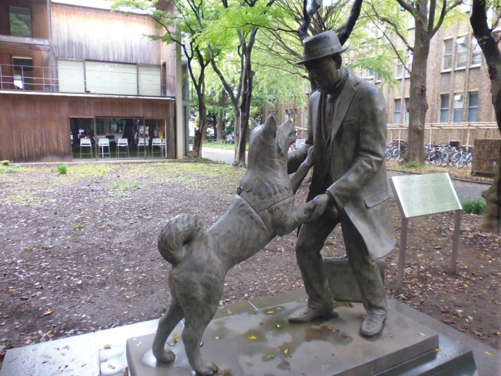 Hachikō and Hidesaburō