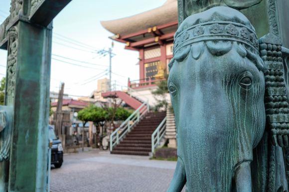 pet cemetery in shinagawa.jpg