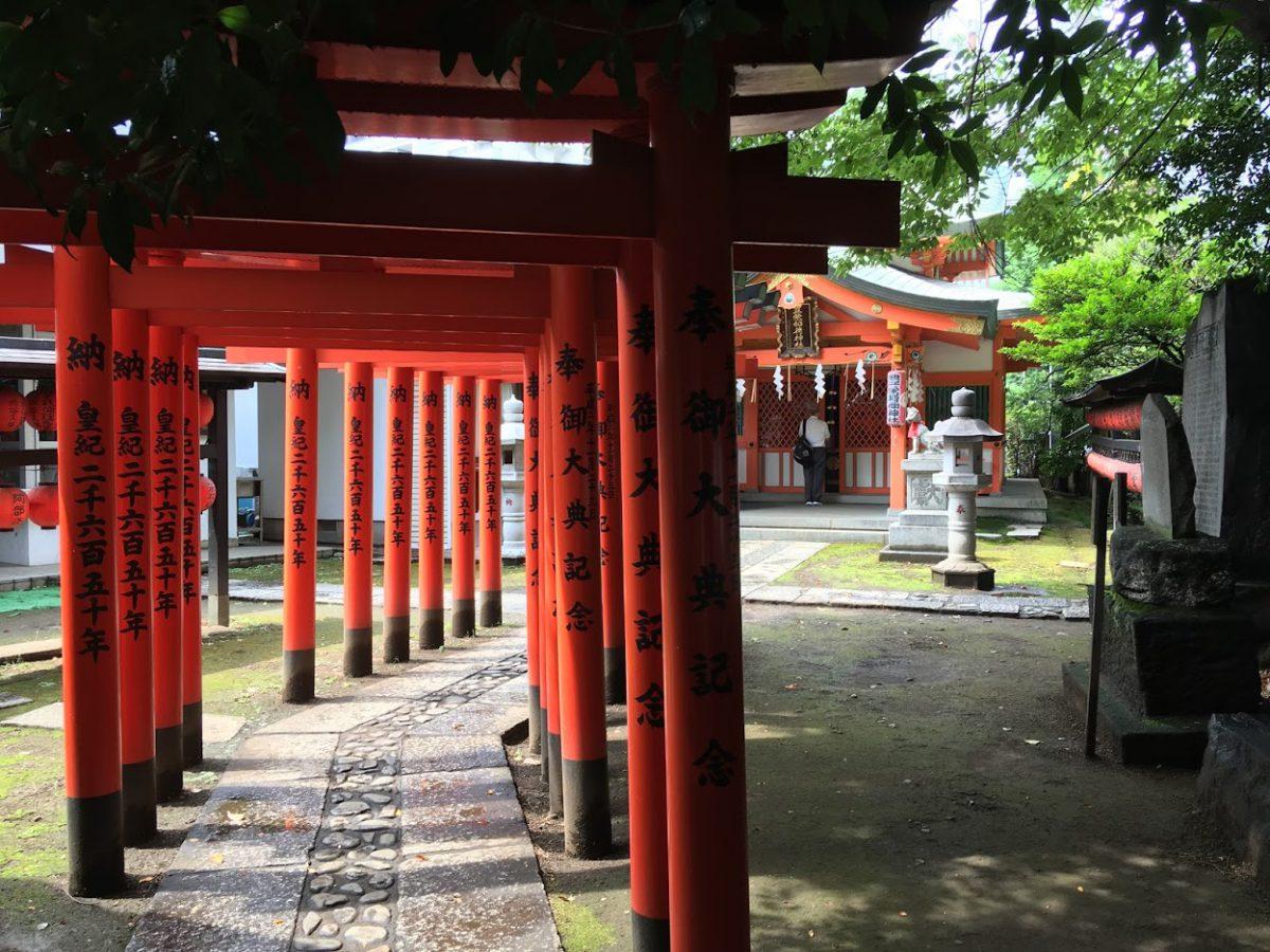 konnoh shrine torii gates