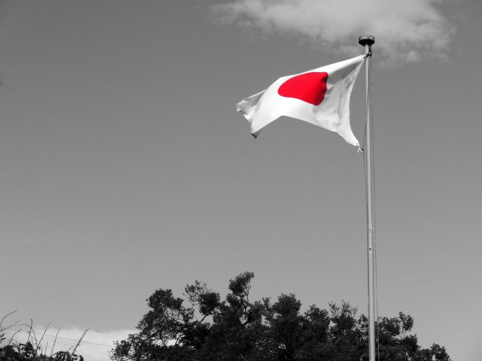 the japanese flag
