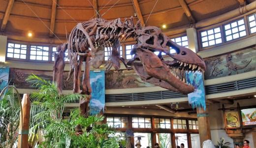 USJ『ジュラシック・パーク』ディスカバリー・レストラン《ティラノサウルス T-REX》