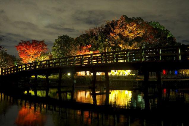 shirotori-garden-lightup-2