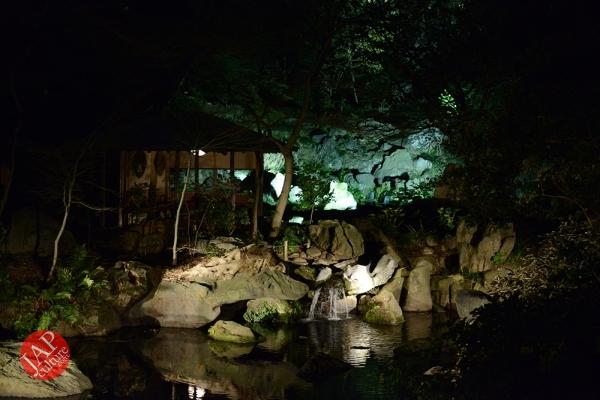 Weeping cherry tree (Shidarezakura) in Rikugien illumination attracts many people.0017