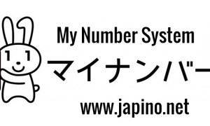 My Number System