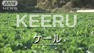 Tokyo: Keeru