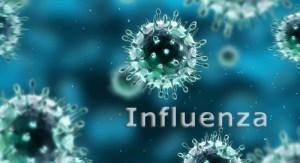 Updated news for influenza virus
