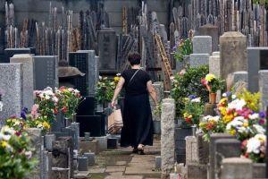 Día del Equinoccio de Primavera (Shunbun No Hi) @ Japón