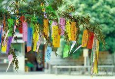 Tanabata, la fiesta de las estrellas