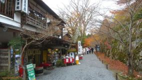 Otoño en Kioto: Ohara, un precioso pueblo de montaña