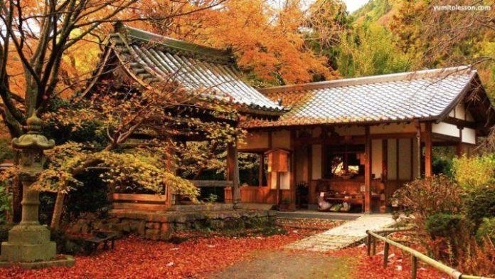 """Viajar a Japón en otoño. Los colores de los árboles o """"momiji"""""""