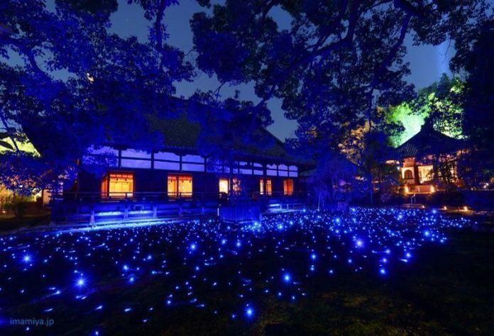 Festivales de Japón: el Shōrenin Light-up (青蓮院ライトアップ) o Encendido del Templo Shōrenin es un evento de iluminación nocturna que tiene lugar varias veces al año con motivo de determinadas celebraciones o festivales de Kioto como el festival Higashiyama Hanatouro (東山花灯路), la época de sakura o el final del otoño
