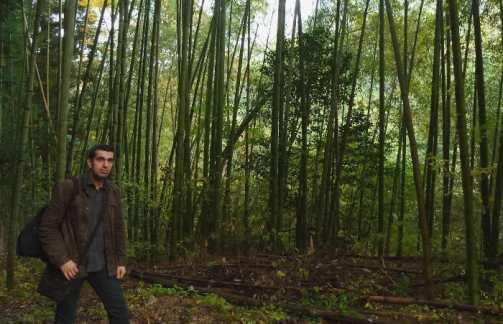 En plena naturaleza japonesa: ruta de Magome a Tsumago