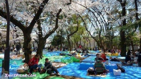 Hanami en el parque de Ueno (Tokio)