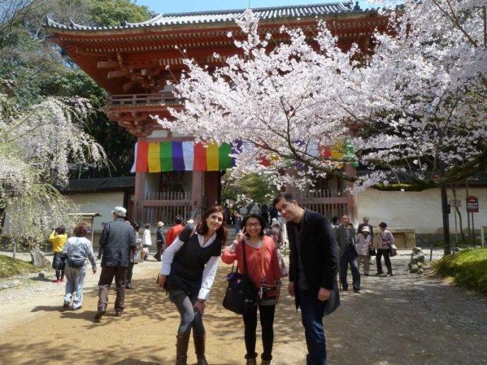 Lugares secretos de Japón en los que disfrutar de los cerezos (sakura) en flor: visitando el templo Daigoji de Kioto con nuestra amiga Miyuki