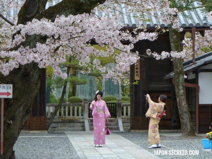 Chicas disfrutando de las flores de cerezo en Kioto
